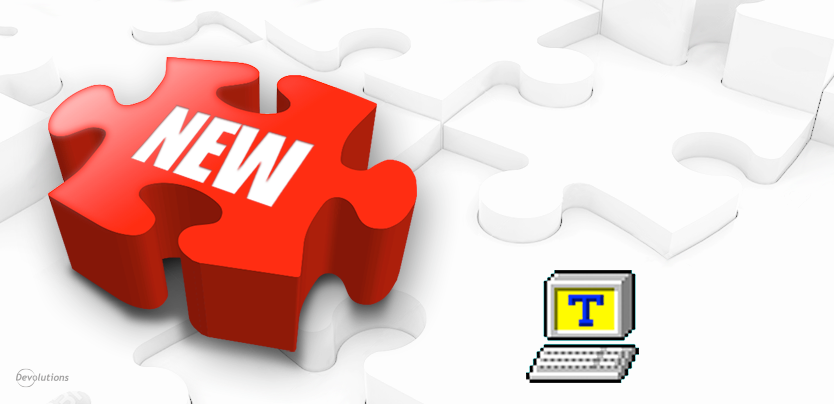 Tera Term Pro 2.3 Add-On for Remote Desktop Manager