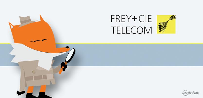 Case Study: Frey + Cie Telecom AG