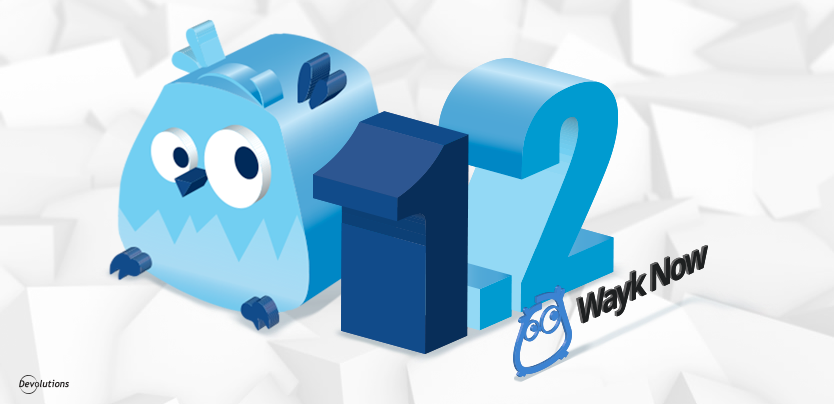 Wayk Now v1.2 Is Here & v1.5 Is Coming Soon!