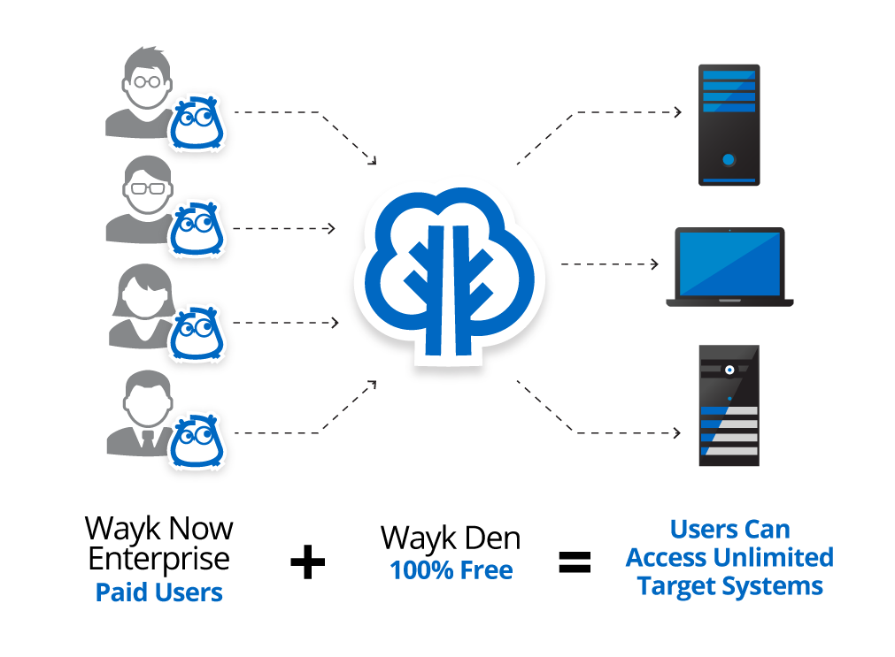 What-is-Wayk-Explained