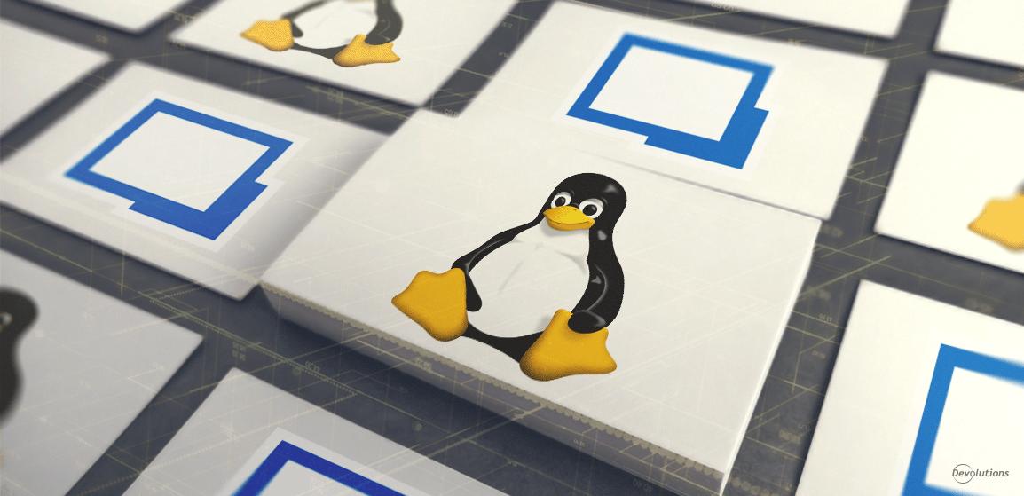 [Fonctionnalités en vedette] Miniatures en direct dans Remote Desktop Manager pour Linux