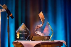 2016 Investissement Québec CEO of the Year award